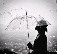 描写秋天的雨的精彩优美语段唯美100字