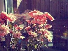 感谢朋友送花的感谢话简单 表达感谢别人送花人的句子
