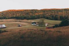 关于描写草原美丽风光景色的古诗词名句大全