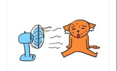 夏天调侃天气热的逗比搞笑说说大全