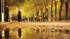 一场秋雨一场寒的说说—描写秋雨的好词好句大全