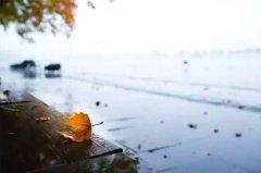 秋雨绵绵的唯美句子—描写秋雨绵绵的句子
