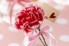 一句话表达对妈妈的爱 感恩妈妈的句子简短