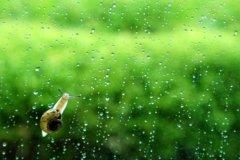 听着窗外的雨声心情 听窗外下着雨心情说说