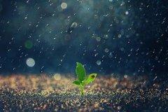 天天下雨的说说-下雨天说说心情短语
