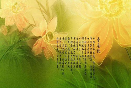 含莲的诗句 描写莲花的诗句大全