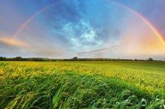彩虹的句子短唯美 遇见彩虹的美句