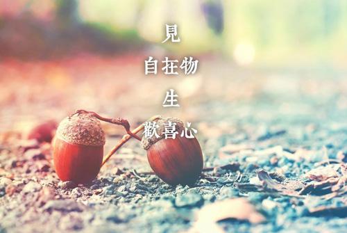 心灵鸡汤经典短文 适合发朋友圈正能量短句