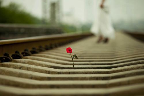 孤独句子简短 一个人孤独短句