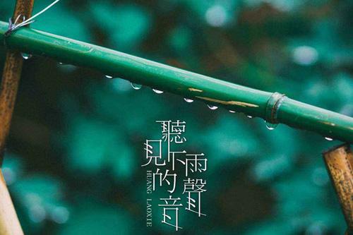 描写雨的句子佳句 下雨的有意境的短句子