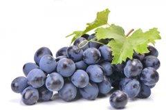 紫色的葡萄像什么 紫色的葡萄可以比喻成什么