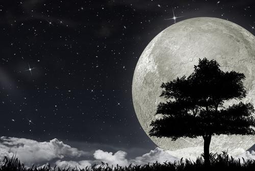 含月的诗句 带月的诗句大全