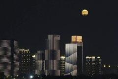 赏月优美句子-描写中秋节赏月的优美句子