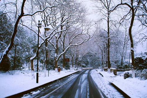 下雪天的说说 下雪天的说说朋友圈