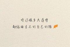 爱情诗句经典-最经典的爱情名言警句