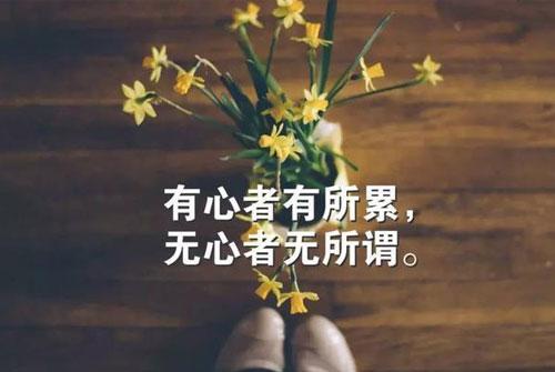 句句深入人心经典句子- 一句禅语一种人生的经典句子