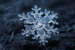 雪花像什么的比喻句-比喻雪花像什么