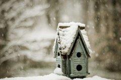 天气凉了关心别人的话-天气逐渐转凉的关心