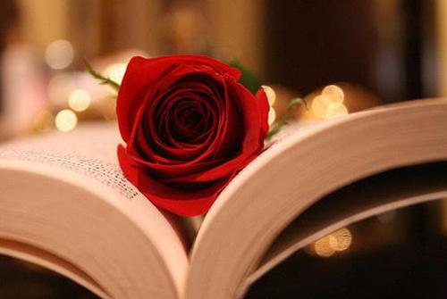 表达爱意的句子简短-委婉表达爱意的句子