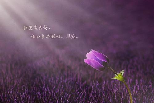 早安短语一句话十字内 早安充满正能量励志语