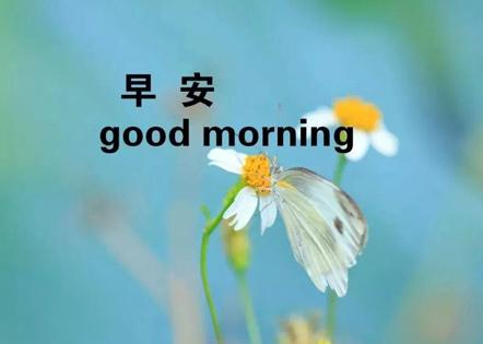 早上简短说说 简单大气早安心语