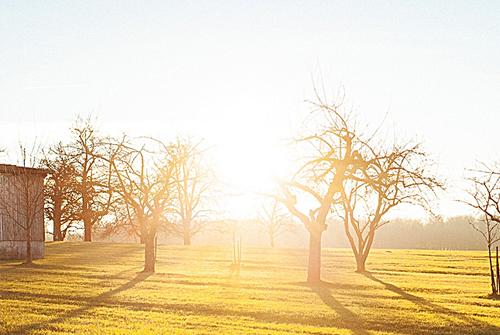 关于阳光的说说-阳光唯美句子心情说说如太阳般的暖心句子