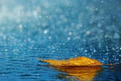 下雨了的说说-又下雨了心情说说